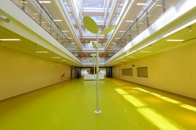 WUM Pediatria Warszawa